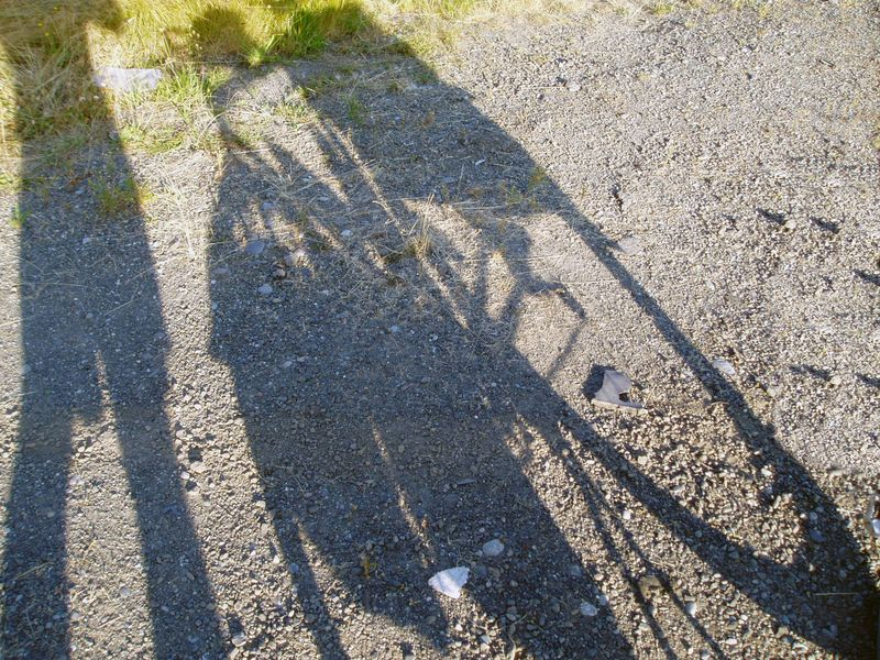 Bicycle-Touring-Hood-Canal-Shadow